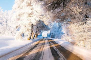 Ghé thăm Mustolanmaki, đại lộ dẫn tới thiên đường mùa đông ở Phần Lan