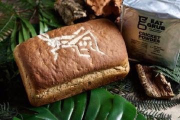Kỳ lạ bánh mỳ côn trùng làm từ hàng trăm con dế ở Anh