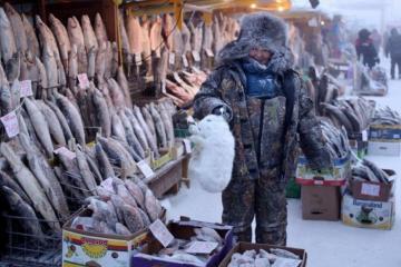 Cuộc sống của người dân tại Oymyakon, Nga - thị trấn lạnh lẽo, khắc nghiệt nhất thế giới