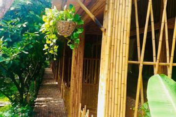 4 homestay miệt vườn ở Cần Thơ lý tưởng để vui chơi dịp Tết dương lịch