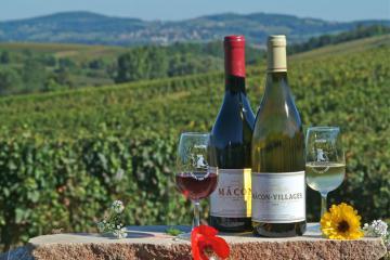 Thưởng thức rượu vang của các thầy tu vùng Burgundy, Pháp - 'thiên đường' vang thế giới