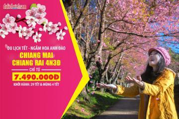 Du xuân Thái Lan Tết Nguyên đán, khám phá Chiang Mai - Chiang Rai và ngắm hoa anh đào chỉ từ 7.490.000 VNĐ