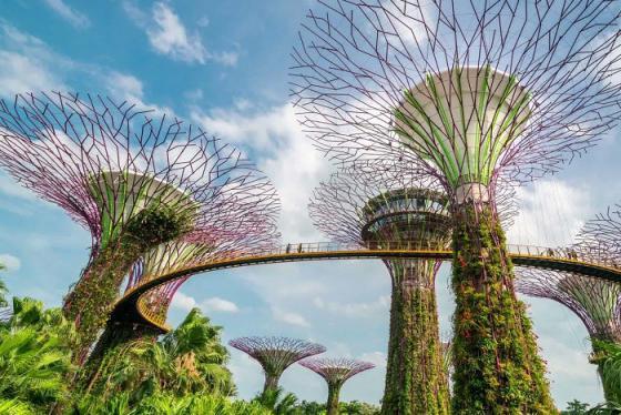 Du lịch Singapore: Khám phá khu vườn trên cao Gardens by the bay