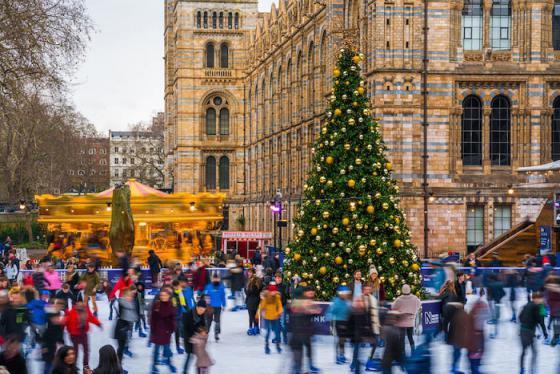 Không khí Noel tưng bừng khắp nước Anh, từ chợ Giáng sinh đến khu vườn Hoàng gia