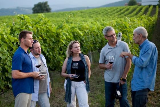 Du lịch rượu vang - xu hướng du lịch mới, tinh tế phong vị văn hóa hiện đại