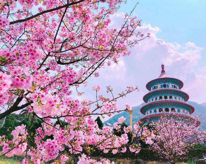 Và dĩ nhiên, du lịch Đài Loan đầu năm, bạn đừng quên ghé qua Đền Wuji Tianyuan.