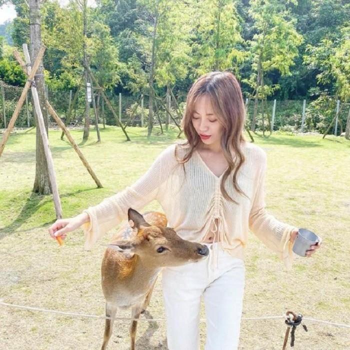 Du lịch Đài Loan đầu năm, ghé thăm Bambi Land.