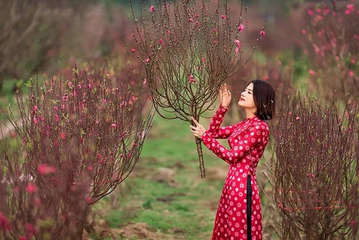 làng hoa, cây cảnh nổi tiếng ở Việt Nam